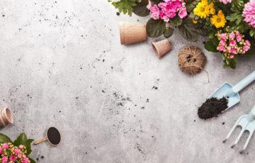 Hledáte inspiraci, jak upravit zahradu? Víme na beton, jaký nejnovější trend jí bude slušet